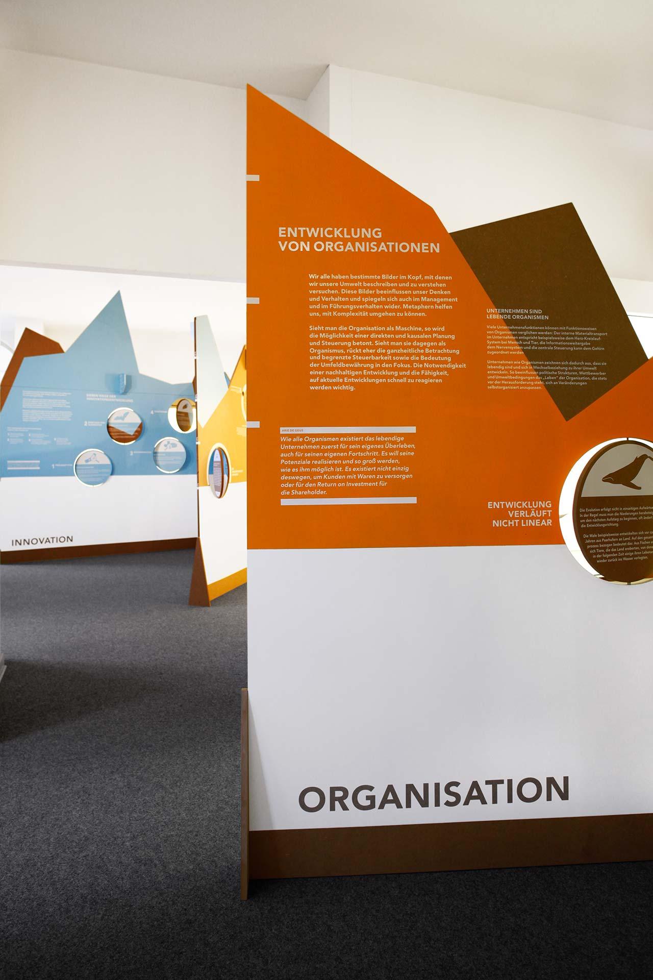 organisation entwicklung vor